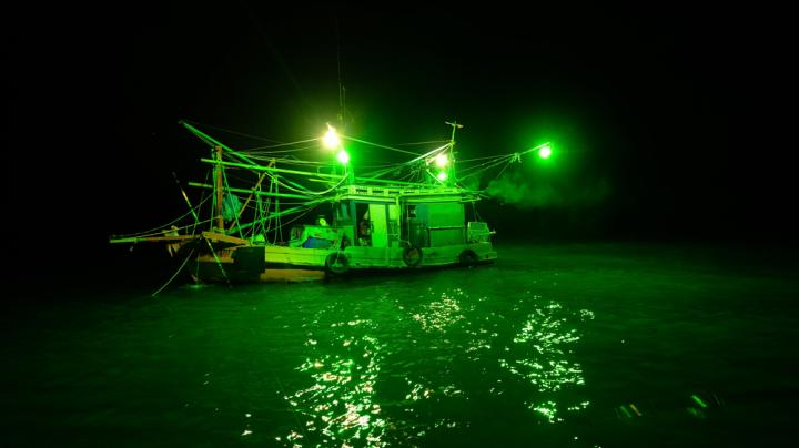 Quiz: Do You Really Know Bowfishing? Preview Image