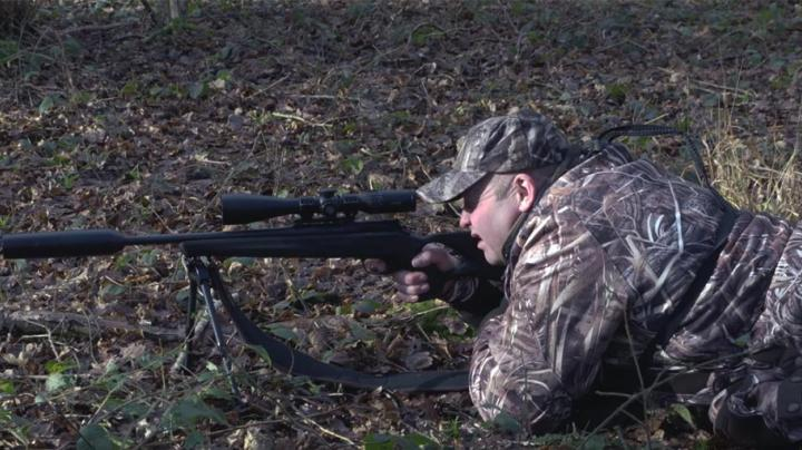 Effective Fallow Deer Management in Lincolnshire Preview Image