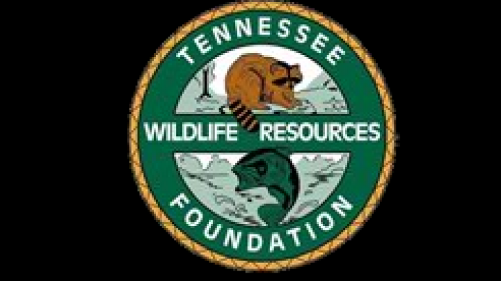 Tennessee Elk Permit to be auctioned on E-bay by TWRF Preview Image