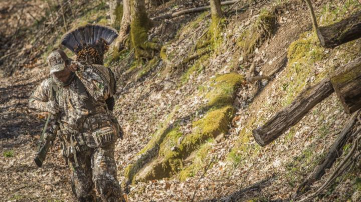 Try Hunting Fall Turkeys This Season Preview Image