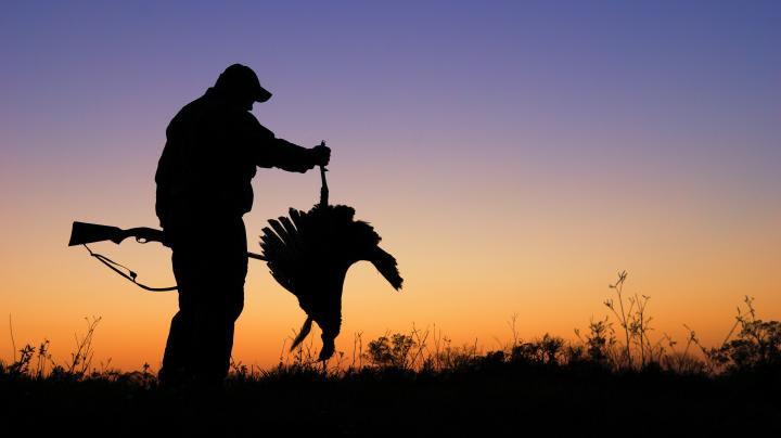 Turkey Hunting in New York Preview Image