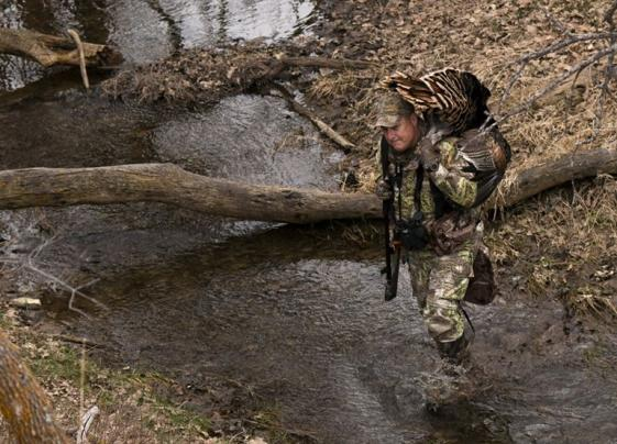 Turkey Hunting River Bottoms and Swamps Preview Image