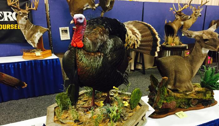 Turkey Taxidermy Photo Gallery from the 2017 NWTF Convention Preview Image