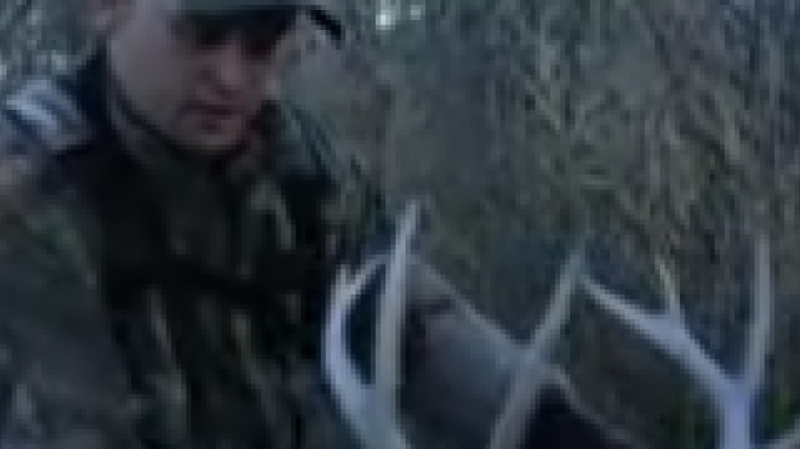 Waddell goes deep with his bow Preview Image