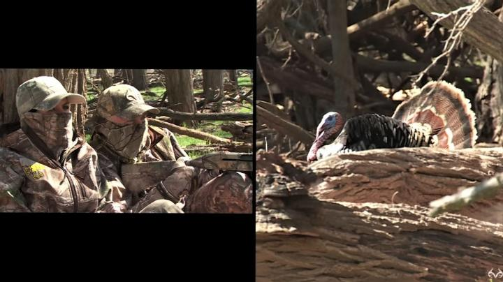Watch David Blanton's Texas Spring Turkey Hunt  Preview Image