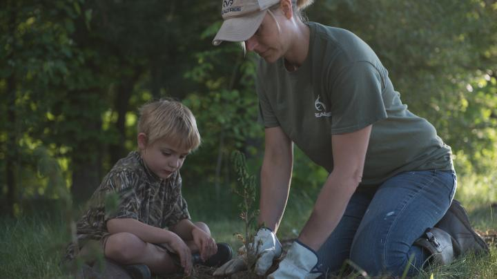 10 Steps to Successfully Planting Trees for Deer Preview Image
