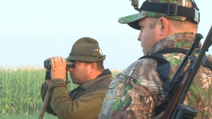 Hunting Roe Deer In Hungary Preview Image