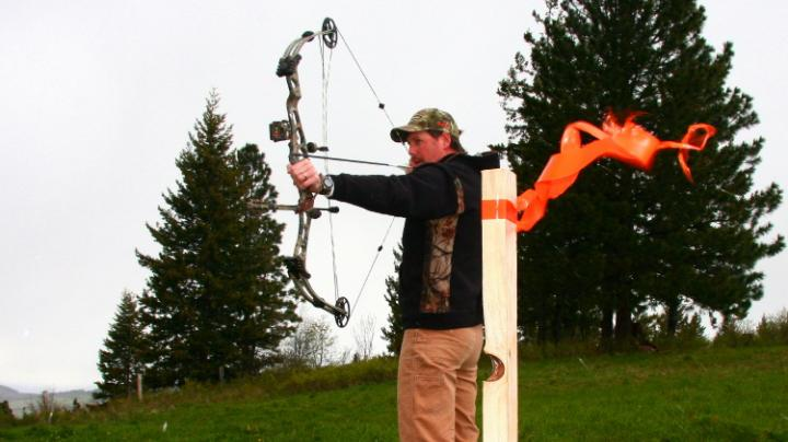 Shooting Arrows In The Wind Preview Image