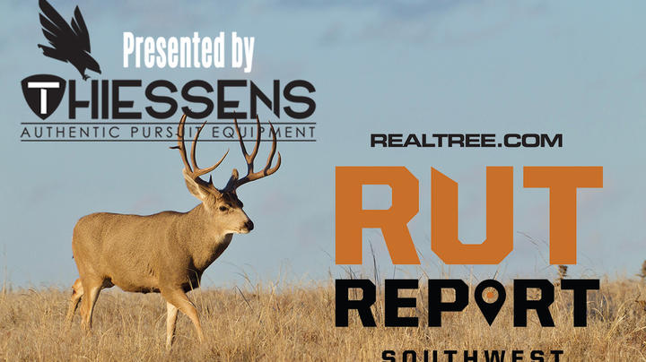Southwest Rut Report: The Rut Is Almost Over