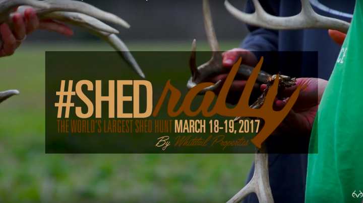 The 2017 Whitetail Properties #ShedRally Preview Image