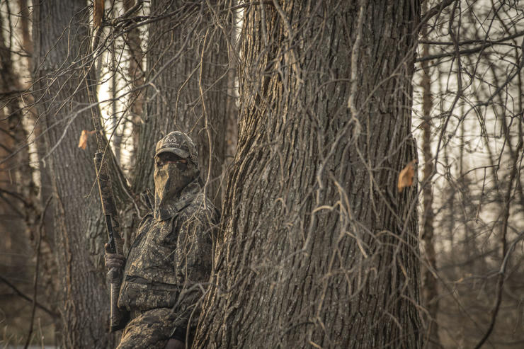 Stale birds and poor hunting have ruled ruled thus far in 2018-'19. Photo © Bill Konway