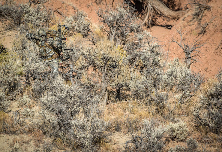 Putting the stalk on desert mule deer requires the right camo. Give the all-new Realtree Excape a try this season. (Bill Konway photo)