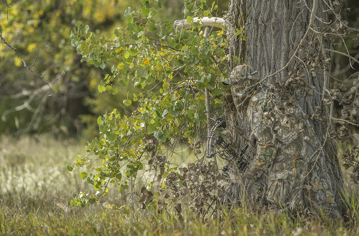 Hunting public land is a challenge. But it isn't as daunting as everyone says. (Bill Konway photo)