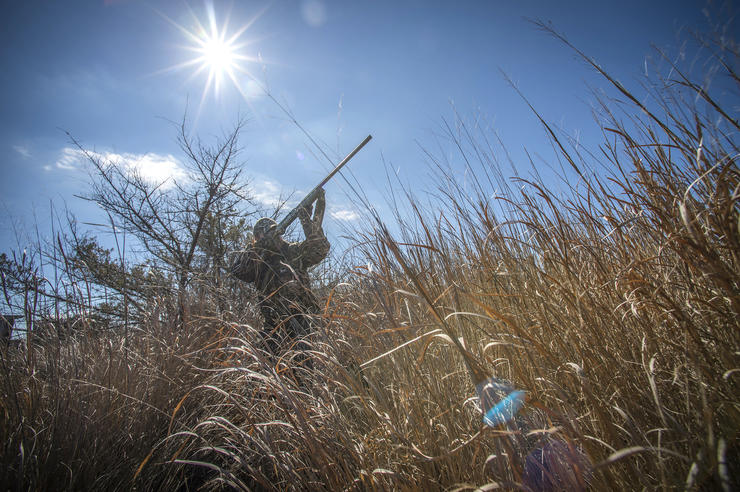 Early morning and evening get all the credit, but up-in-the-day hunts often work well. Photo © Bill Konway