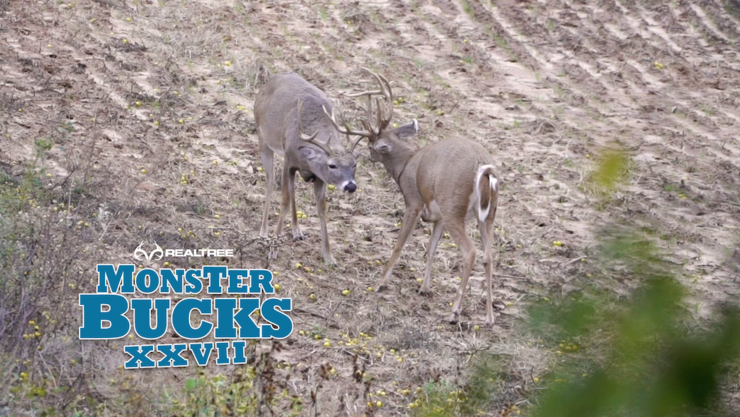 Cole Barthel waits for a chance on the bigger of these Oklahoma bucks. (Whitetail TV photo)