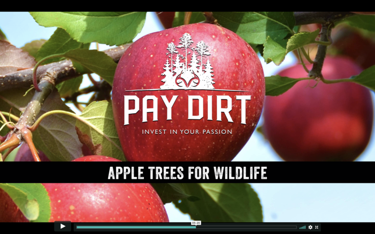 Interested in land management, fruit trees included? Check out Pay Dirt on Realtree365.