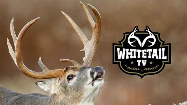 Watch the 2019 season of Whitetail TV on Realtree 365. (Realtree photo)