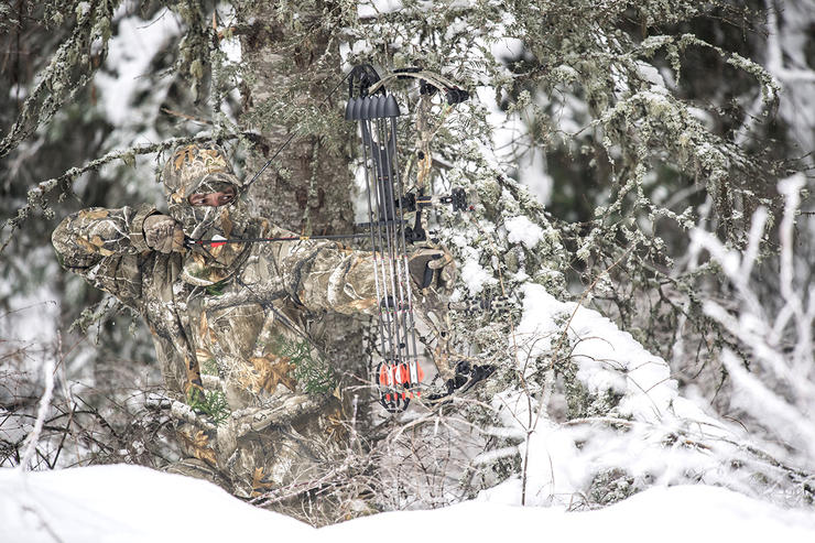 The trees are barren in the late season. Setting up natural blinds and hunting from the ground can be the best approach. (John Hafner Image)