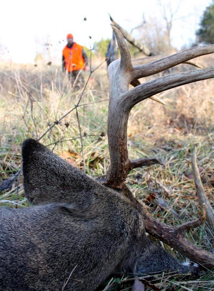 Available licenses, zone changes, Sunday hunting laws and many other changes will go into effect in 2020. (Josh Honeycutt photo)
