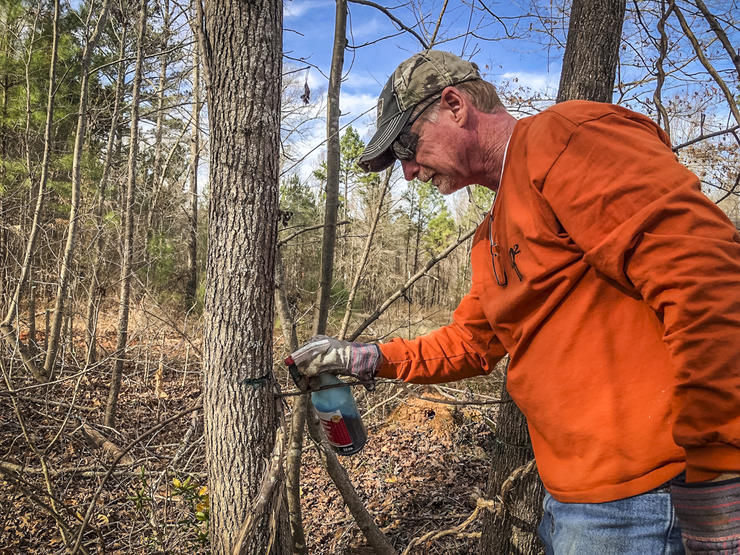 Using the hack-and-squirt method takes longer to change the landscape, but it's certainly effective. (QDMA photo)