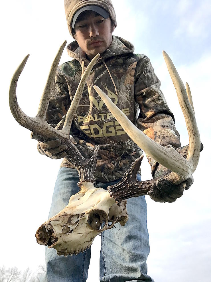 The author found this buck dead a couple years ago while shed hunting. It's a suspected EHD kill. (Josh Honeycutt photo)