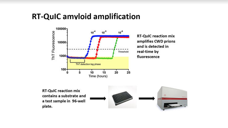 The RT-QuIC reaction mix amplifies CWD prions and is detected in real-time by fluorescence. (CWD Evolution graph)