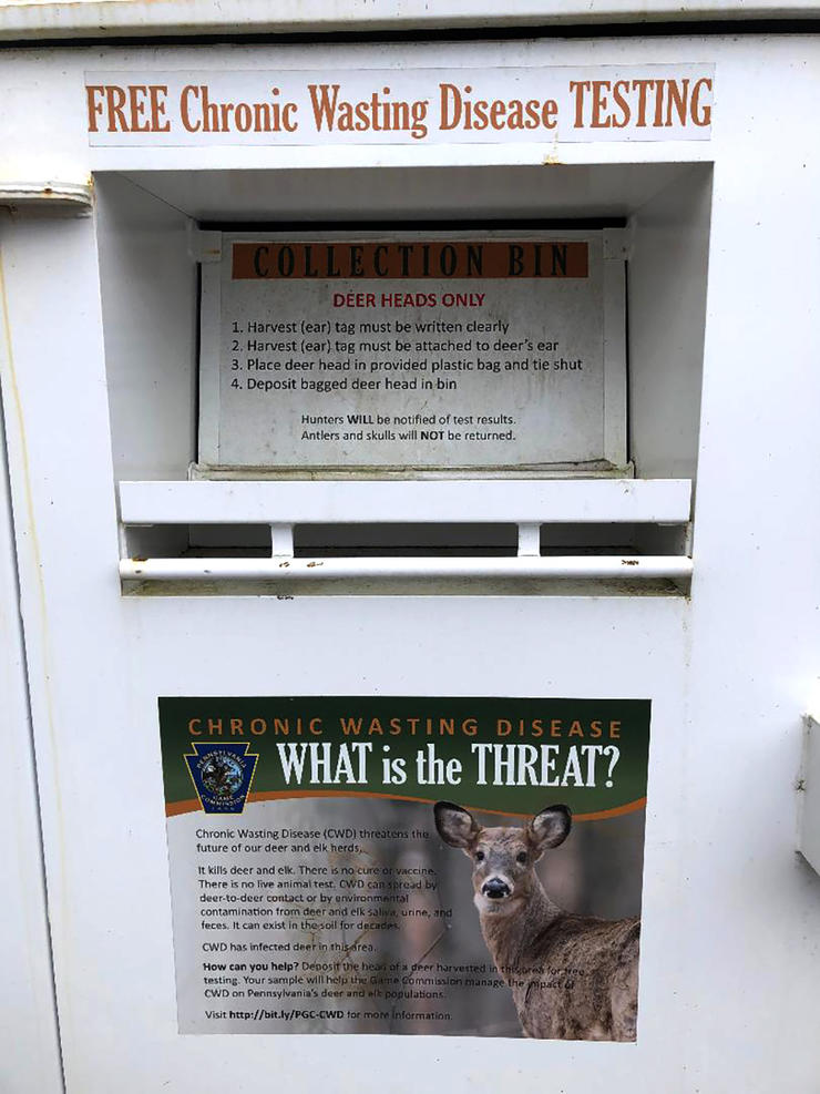 Some states, such as Pennsylvania, are establishing CWD sample drop-off stations for hunters. This provides additional data for agencies to work with and helps determine if harvested deer are CWD-positive, or not. (QDMA photo)