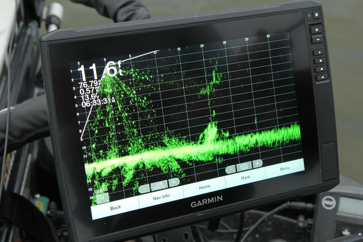 Today's forward-facing sonar units make it possible to watch your jig and crappie reactions in real time. Image by Will Brantley