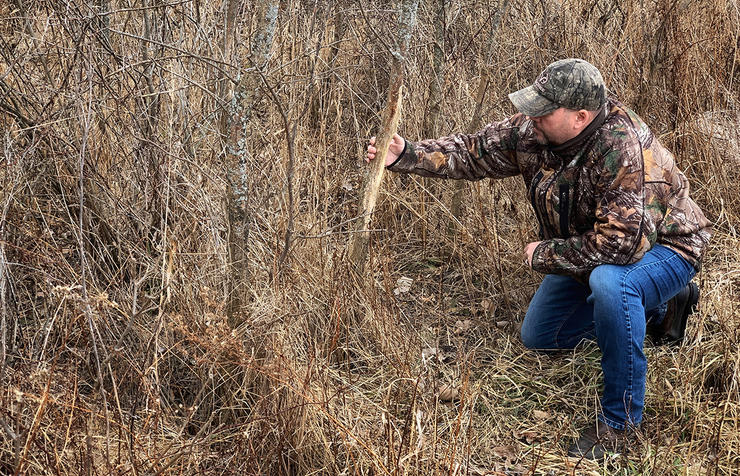 Back-track good trails and look for buck sign made last fall. Image by Bill Konway
