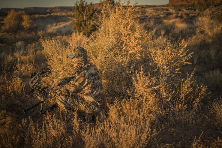 Bowhunting western game almost always presents difficult challenges, but that's what makes these adventures so rewarding. Image by Bill Konway