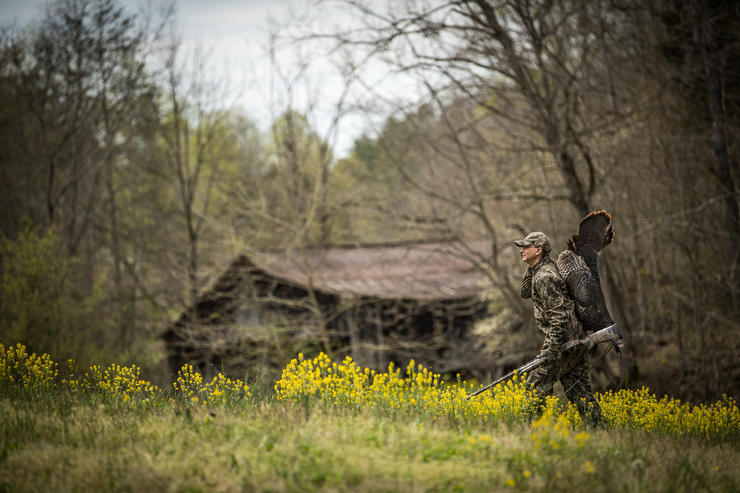 Early season often sees flocked up birds that won't leave their hens, but gobblers haven't been pressured. Image by Bill Konway