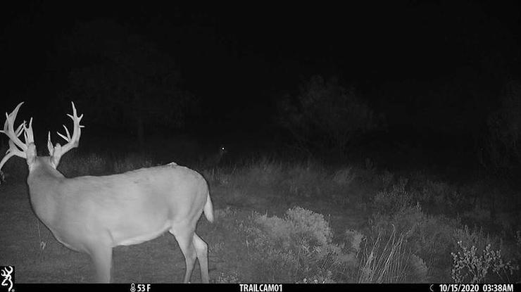 After two photos in 2019, the buck returned in Oct. of 2020. Image by All Things Hunting