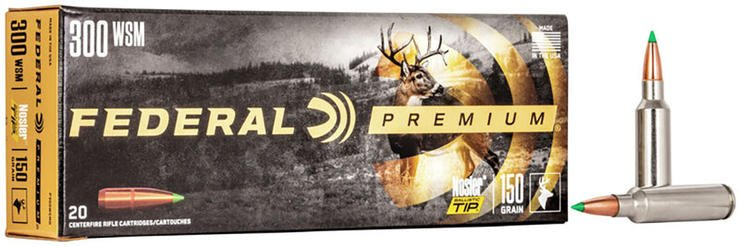 The classic Nosler Ballistic tip, in a heavy bullet fired fast, often anchors whitetails on the spot.