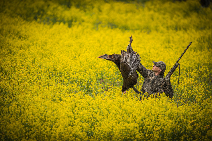 You have to do everything right in these tough states to tag a turkey. Image by Bill Konway