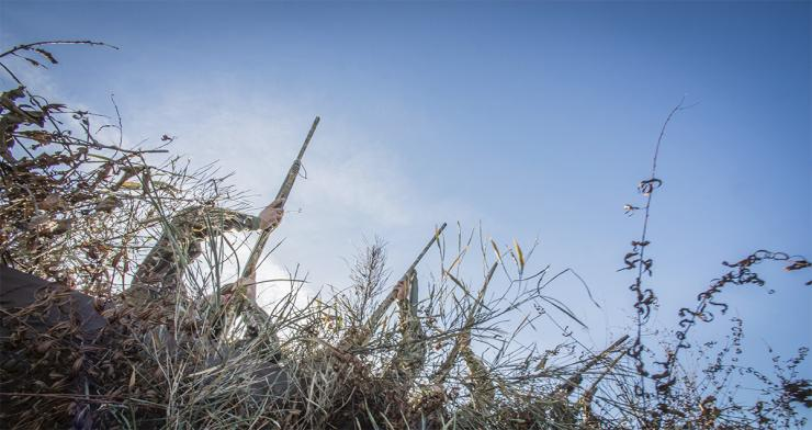Shooting at a bird on your buddy's side of the blind is a sure way to hunt alone more often. Photo © Banded Outdoors