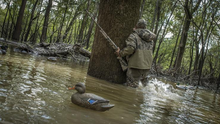 Every duck hunter dreams of hunting flooded timber, but the game has many challenges. Photo © Bill Konway