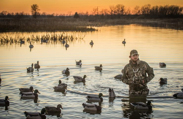 Most duck hunters prefer early mornings, but some enjoy evening outings. Both can produce great results. Photo © Bill Konway