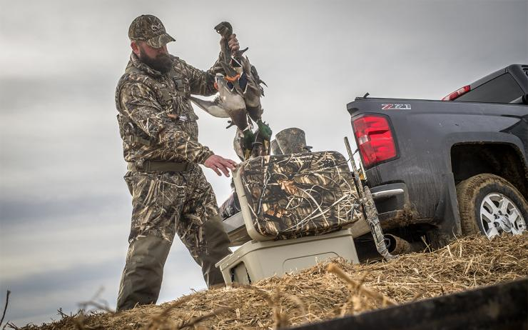 A plan to cut the daily Atlantic Flyway mallard limit to two birds but still allow two hens has been criticized by many, including Delta Waterfowl. Photo © Bill Konway