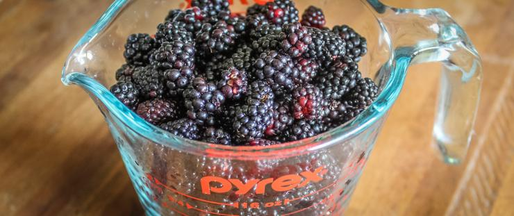 You only need two cups of blackberries for the recipe.
