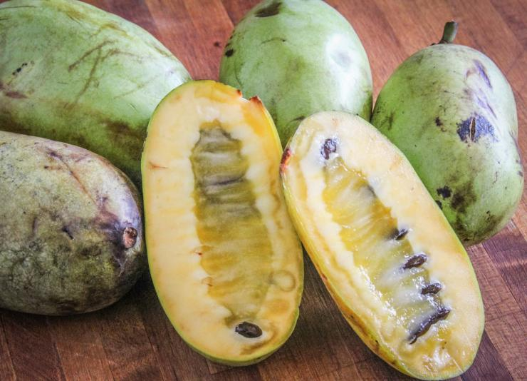 Scoop the flesh from the ripe pawpaw and pick out the seeds.
