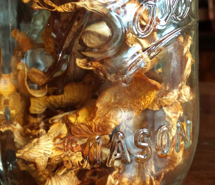 Store the dried mushrooms in the pantry in a tightly sealed jar.