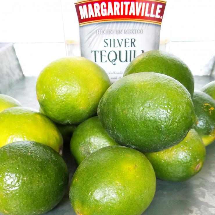 The tropical flavors of lime and tequila form the perfect marinade for squirrel meat.