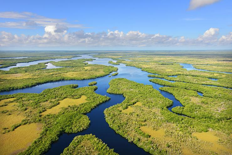 Fish and wildlife habitat in southern Florida, from Lake Okeechobee south to Florida Bay and the Everglades, is in peril. Photo © Vanishing Paradise