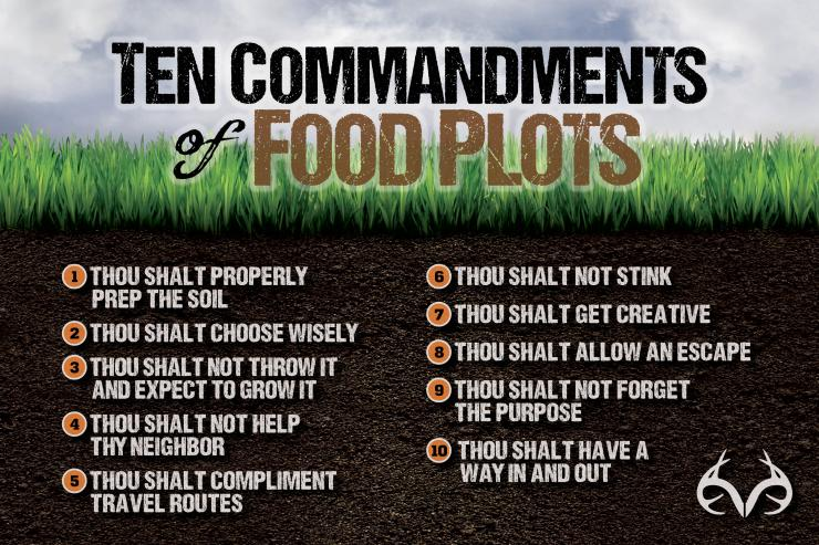 The 10 Commandments of Food Plots