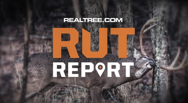 Realtree Rut Report