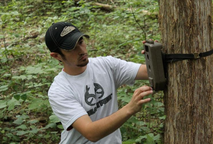 Use camera-concealing tips to keep deer from sniffing out your trail cameras.