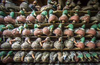 Many decoys require touch-up paint and other repairs before the season. Photo © Bill Konway