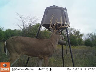 This impressive buck started frequenting one of Scott Burton's trail-camera locations in mid-October last fall. Burton tagged the buck on October 16. (Photo courtesy of Scott Burton)
