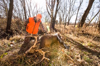 Another look at this nice Missouri deer. (Paul Sawyer photo)