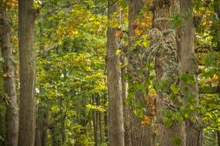 Concealment is of the utmost importance when hunting whitetails. (Realtree photo)